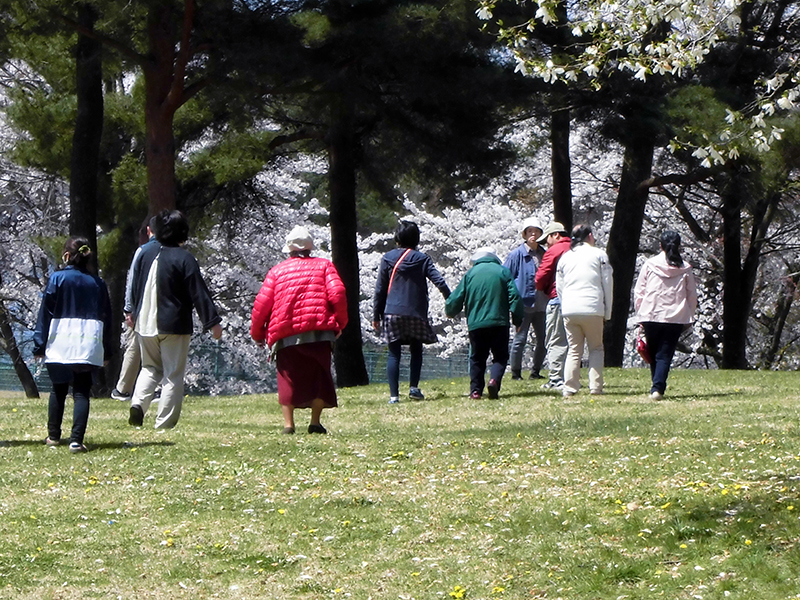 公園 お散歩